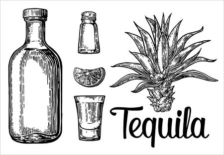 sketch set of alcoholic cocktails. engraving illustration