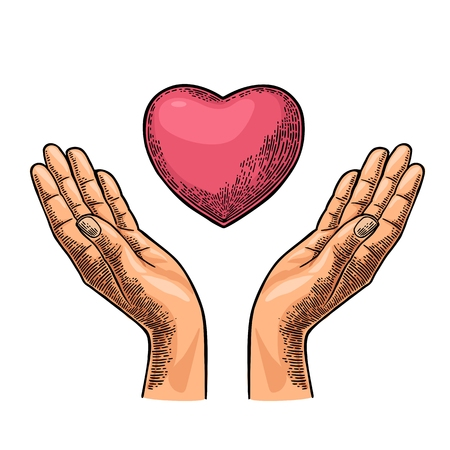 Illustration pour Heart in open female human palms. Vector black vintage engraving illustration isolated on a white background. For poster Mother s Day - image libre de droit