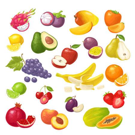 Illustration pour Set tropical fruits. Vector color flat illustration isolated on white - image libre de droit