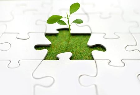 Photo pour Plant jigsaw  - image libre de droit