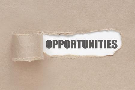 Photo pour Uncovering opportunities - image libre de droit