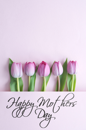 Mothers day spring tulips inside a paper fold with space