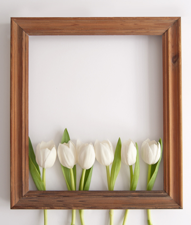 Wooden frame around white spring tulips with space