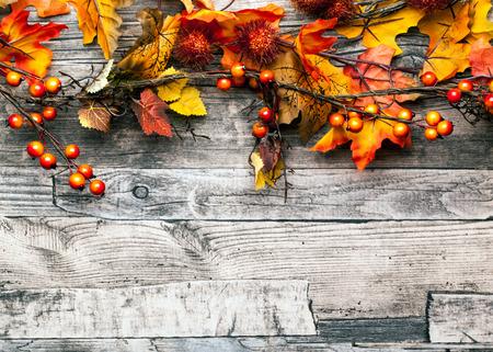 Photo pour autumn background - image libre de droit