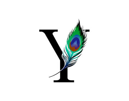 Y Letter Decorated With Exotic Peacock Feather.