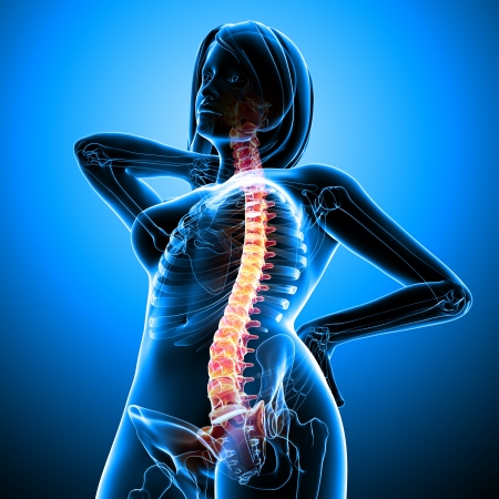 Back pain of female body