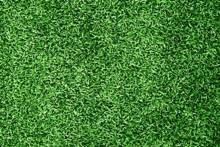 grass blackground