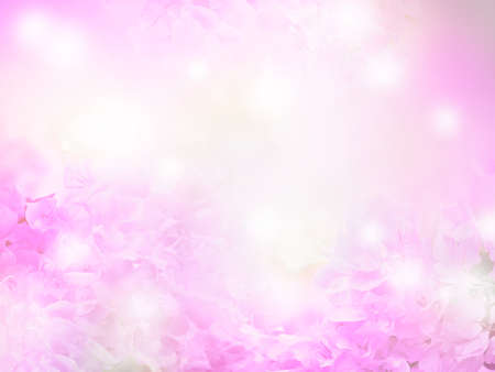 Abstract floral background of Bougainvillea flower over pastel colors with soft style for spring or summer time.