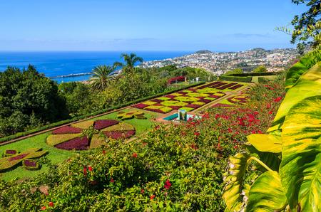 Photo pour Monte tropical gardens in Funchal town, Madeira island, Portugal - image libre de droit
