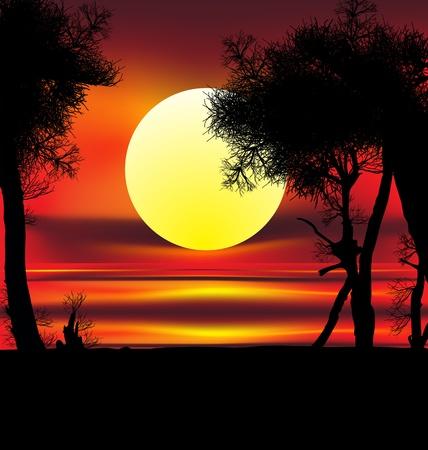 Foto de Beautiful african sunrise reflected on lake, with backlit acacia tree on Amboseli Natural Par - Imagen libre de derechos