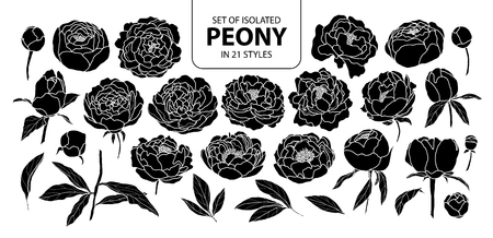 Ilustración de Set of isolated silhouette peony in 21 styles. Cute hand drawn flower vector illustration in white outline and black plane on black background. - Imagen libre de derechos