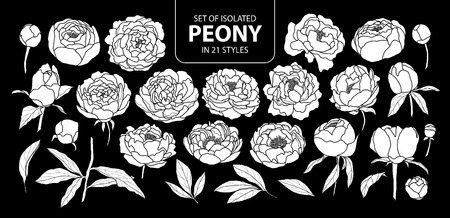 Illustration pour Set of isolated white silhouette peony in 21 styles. Cute hand drawn flower vector illustration in white plane and no outline on black background.  - image libre de droit