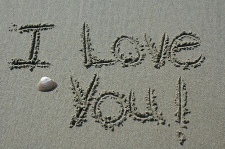 Sand Writing - I Love You! With Shell Accent