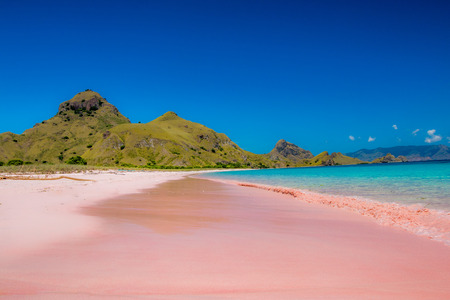 Pink Beach in Komodo Dragon Island Indonesia