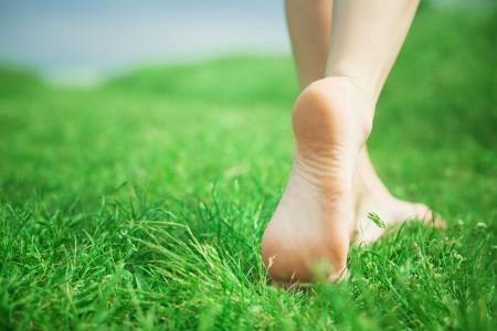 Photo for Woman legs walking on green grass - Royalty Free Image