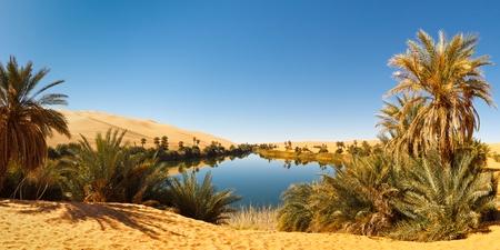 Umm al-Ma Lake - Idyllic oasis in the Awbari Sand Sea,  Sahara Desert, Libya
