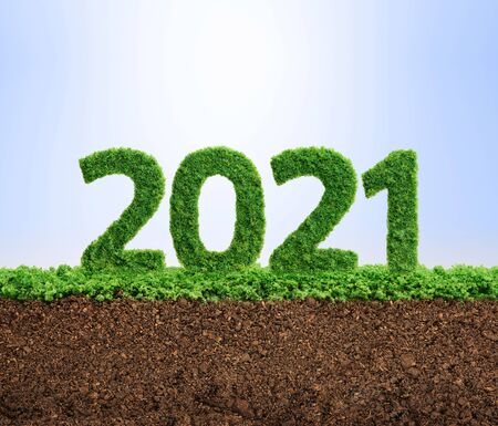 Foto de 2021 is a good year for growth in environmental business. Grass growing in the shape of year 2021. - Imagen libre de derechos