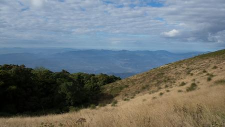 Savana on the height-est Mountain in Thailand
