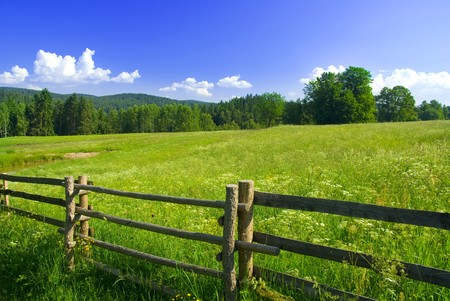 Photo for Photo of meadow with fence in sunny day. - Royalty Free Image