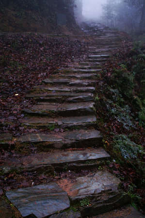 step lead to mountaintop