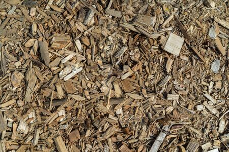 background of small wood chips top view