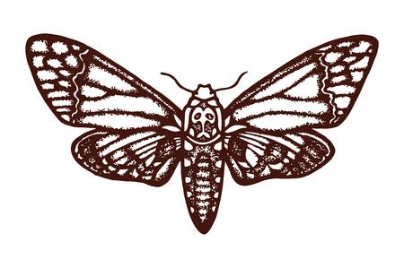 Polyarnaya180800200