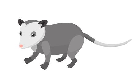 Illustration pour Cute cartoon opossum on isolated white background, vector illustration - image libre de droit