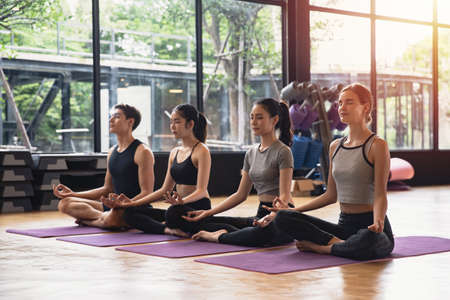Group of sporty mix race of Caucasian and Asian people both women and men practicing yoga pose at studio gym, Yoga and fitness work out healthcare concept