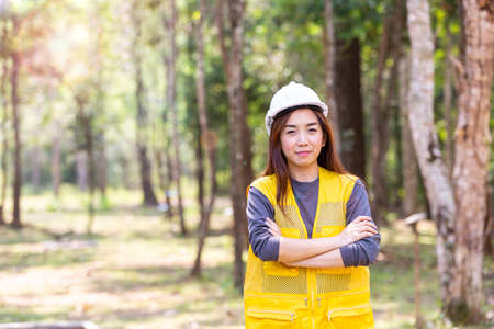 Photo pour An engineer working in the forest. Forest worker supervisors are constructing roads in the forest. - image libre de droit