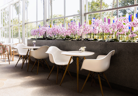Photo pour Coffee shop interior design with white chairs and violet of flower. - image libre de droit