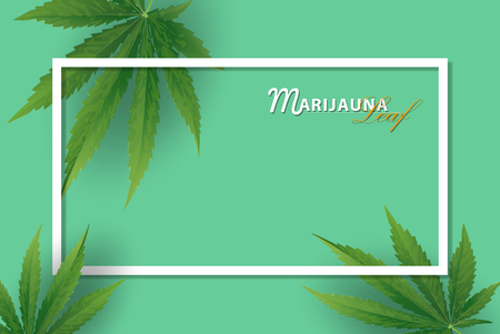 Marijuana concept and face paragon and legislation social issue as medical and recreational weed usage on green background symbols in a 3D illustration style.