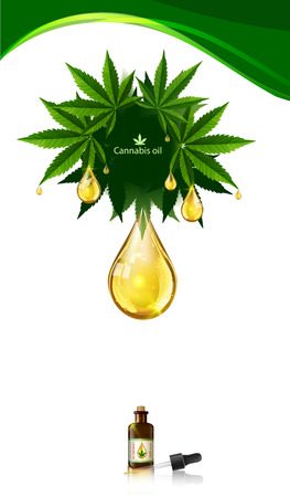 Marijuana concept and paragon body and legislation social issue as medical and recreational weed usage on white background symbols in a 3D illustration style.