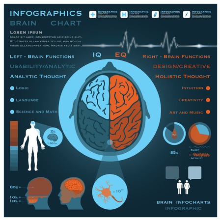 Brain Infographic Infocharts Health And Medical Science Backgroundのイラスト素材