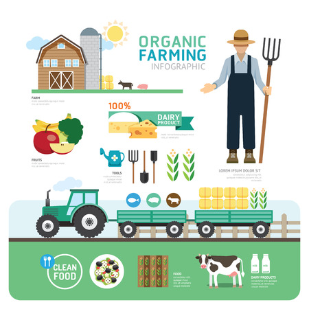 Organic Clean Foods Good Health Template Design Infographic. Concept Vector Illustration