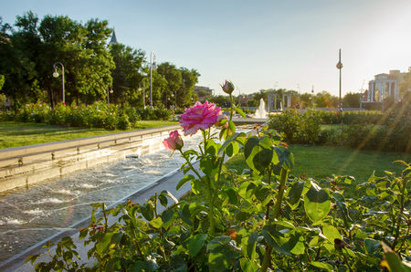 Lenin Square with flowers and a fountain at sunset, Astrakhan, Russia.