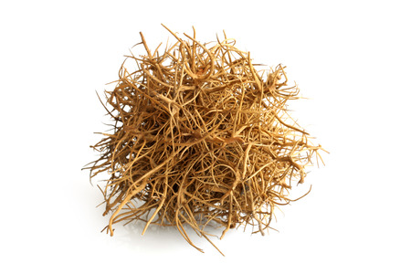 Tumbleweed on white background