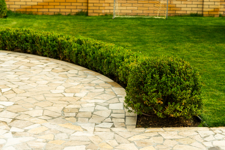 Foto de mowed lawns with shrubs near the stone walkway in landscape design - Imagen libre de derechos