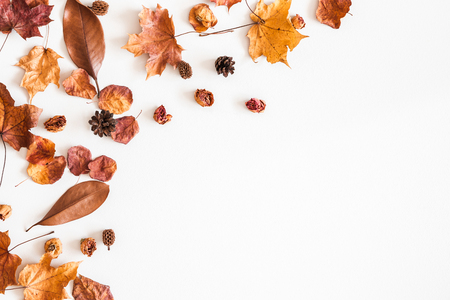 Foto de Autumn composition. Frame made of autumn dried leaves on white background. Flat lay, top view, copy space - Imagen libre de derechos