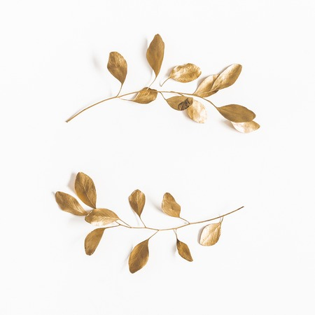 Photo for Eucalyptus leaves on white background. Wreath made of golden eucalyptus branches. Flat lay, top view, copy space, square - Royalty Free Image