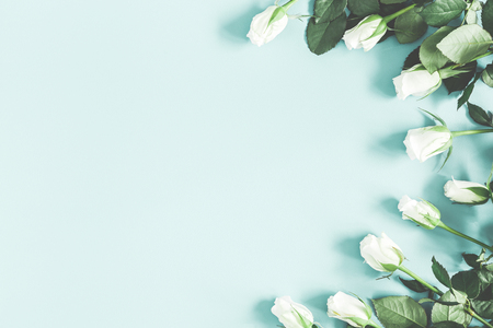 Foto de Flowers composition. White rose flowers on pastel blue background. Flat lay, top view, copy space - Imagen libre de derechos