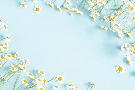 Foto de Flowers composition. Chamomile flowers on pastel blue background. Spring, summer concept. Flat lay, top view, copy space - Imagen libre de derechos