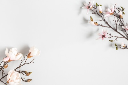 Photo pour Flowers composition. Magnolia flowers on pastel gray background. Flat lay, top view, copy space - image libre de droit