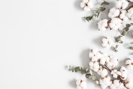 Photo pour Flowers composition. Eucalyptus leaves and cotton flowers on pastel gray background. Flat lay, top view, copy space - image libre de droit