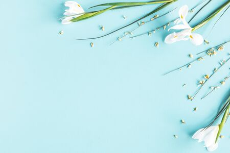 Photo for Flowers composition. Spring flowers on blue background. Flat lay, top view - Royalty Free Image