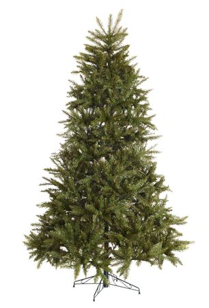 Green christmas  fir tree without decoration. Isolated.