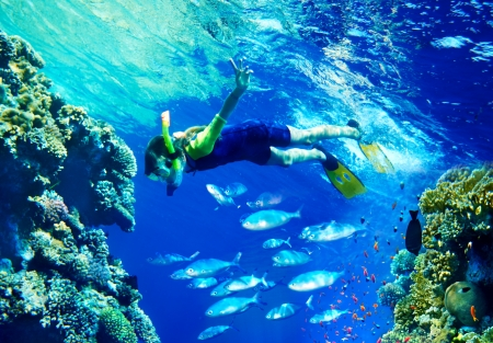 Child diver under water with group coral fish.