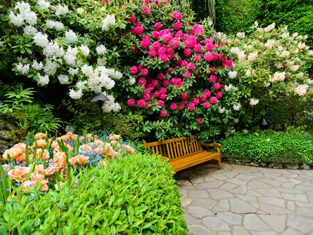 Photo for Bench in lush springtime garden with walkways between flower beds - Royalty Free Image