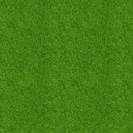 Photo pour Green grass pattern and texture for background. Close-up image. - image libre de droit