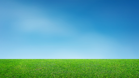 Photo pour Landscape of grass field and green environment park use as natural background. Field of green grass and blue sky. - image libre de droit