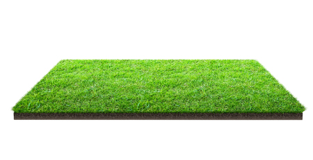 Foto de Green grass field isolated on white with clipping path. Sports field. Summer team games. Exercise and recreation place. - Imagen libre de derechos